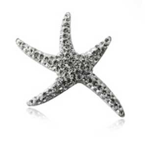 PV0256ZSS - Hviezdica - strieborný prívesok so zirkónmi   Šperky ... 1e7dfbf41bb